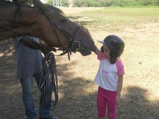 Summer Camp ΟΑΚΑ |Αξεχαστη Εμπειρία με τα άλογα